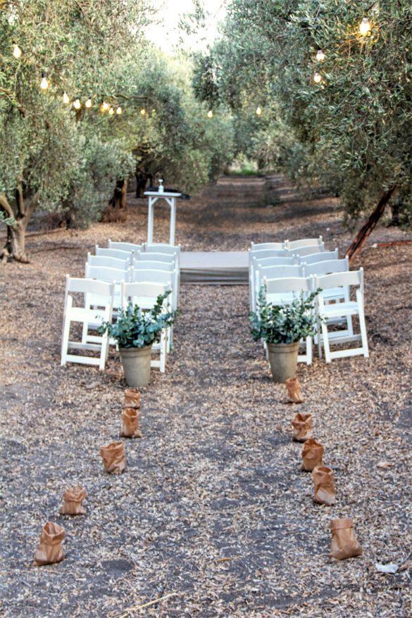חתונת שטח במטע זיתים - סטודיו ציפורות