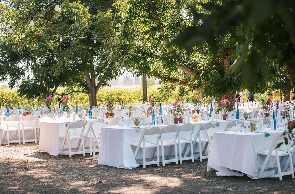 חתונה בשטח, בלב מטע פקאנים. מתוך החתונה של דן וערבה. צילום: דניאל ישר