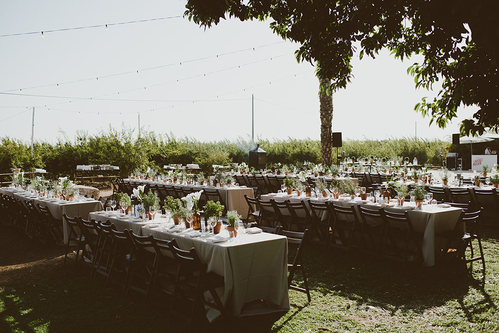 צבעוניות טבעית ויפהפיה בחתונה של נטע וטל. צילום: חגי גלילי