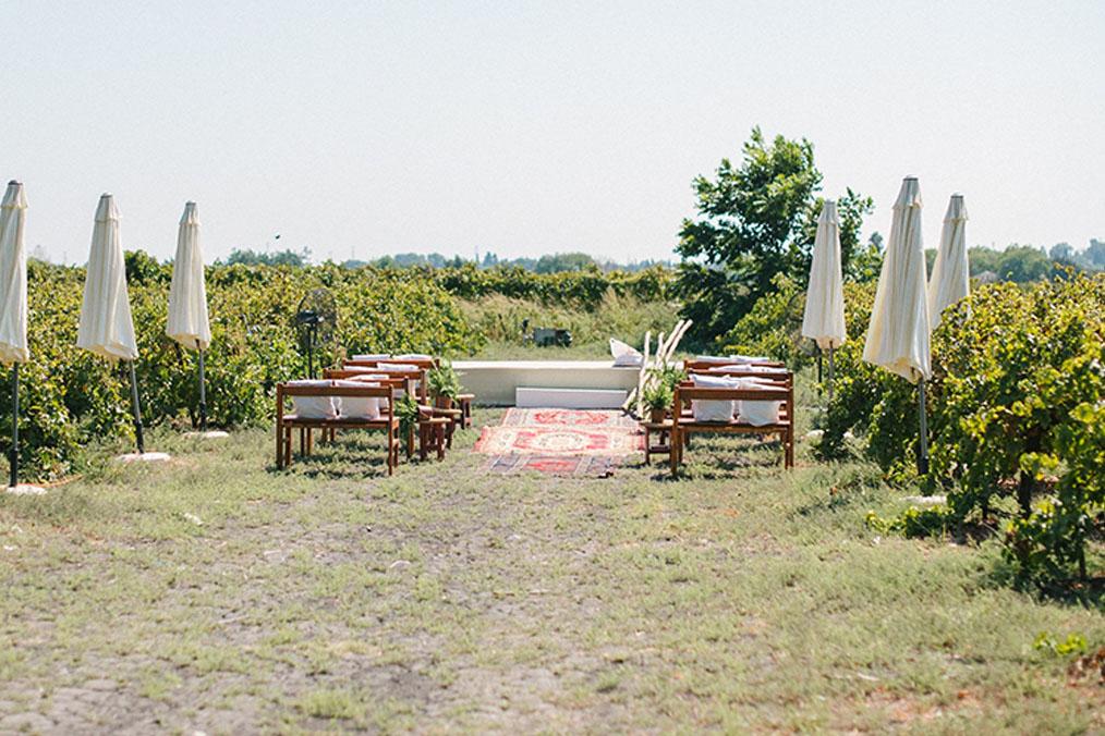 חופה בין הכרמים. מתוך החתונה של דן וערבה. צילום: דניאל ישר