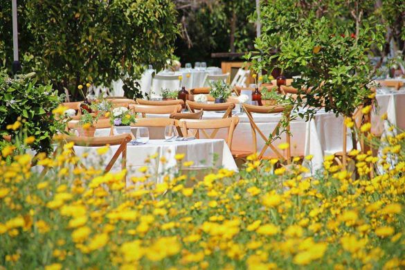חתונת גינה אביבית - סטודיו ציפורות - הפקה, עיצוב ומיתוג אירועים