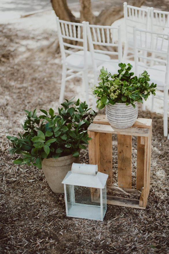 החתונה המדברית של הדר ומתי - סטודיו ציפורות - עיצוב הפקה ומיתוג