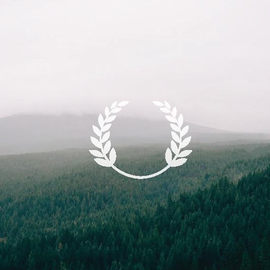 הזמנת חתונה ביער חורפי - עיצוב הזמנה לחתונה - סטודיו ציפורות